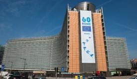 Masă rotundă pe tema viitorului Uniunii Europene - 27 martie